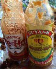 2 Hot Sauce Bottles